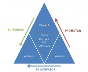 skin-vitamin-antioxidant-diagram-300x247